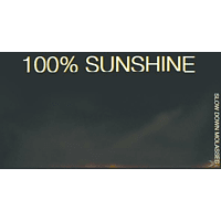 Slow Down Molasses - 100% Sunshine (LP+MP3) [LP + Download]