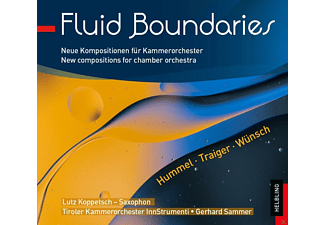 Lutz Koppetsch, Tiroler Kammerorchester Innstrumenti - Fluid Boundaries - (CD)