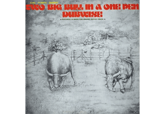 King Tubby - Two Big Bull In A One Pen (Dubwise Versions) - (CD)