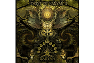 VARIOUS - Forest Of Banyan Ii [CD]