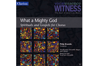 VocalEssence Ensemble Singers/ Brunelle Philip - What A Mighty God/Spiritals And Gospels For Chorus [CD]