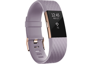 FITBIT Activity tracker Charge 2 Edition Gunmetal Rose Gold Large (FB407RGLVL-EU)