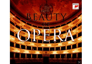 Anna Netrebko, VARIOUS, Domingo, Villazon, Garanca, Grigolo, Netrebko/Domingo/Villazon/Garanca/Grigolo/+ - The Beauty Of Opera - (CD)