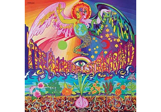 The Incredible String Band - 5000 Spirits - (Vinyl)