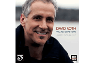 David Roth - Will You Come Home (2 Lp) [Vinyl]