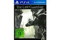 The Last Guardian [PlayStation 4]