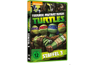 Teenage Mutant Ninja Turtles - Staffel 3 [DVD]