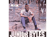 Junior Byles - Beat Down Babylon [Vinyl]