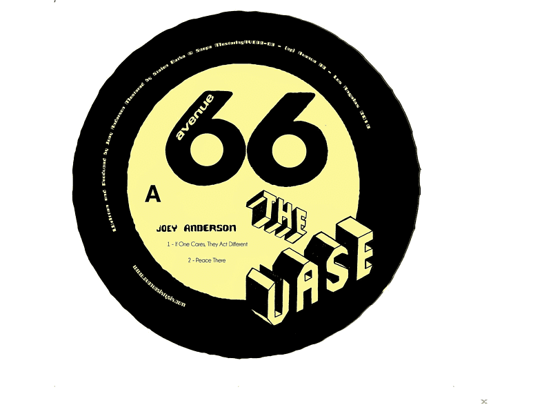 Joey Anderson - The Vase [Vinyl]