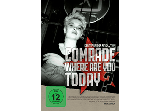 Comrade, Where Are You Today? - (DVD)