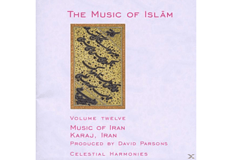 VARIOUS - Music Of Islam Vol.12 - (CD)