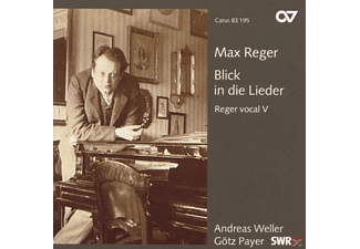 Payer, Weller/Payer - Blick In Die Lieder - (CD)