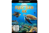 Red Sea  [4K Ultra HD Blu-ray]