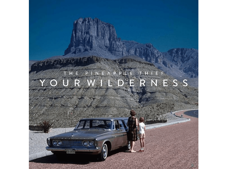The Pineapple Thief - Your Wilderness (Picture LP) [Vinyl]