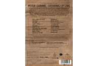 Peter Gabriel - Growing Up Live [DVD]
