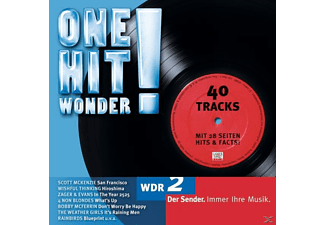 VARIOUS - One Hit Wonder - (CD)