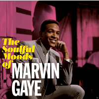 Marvin Gaye - SOULFUL MOODS OF MARVIN.. [CD]