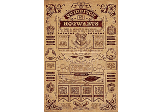 PYRAMID INTERNATIONAL Harry Potter Poster Quidditch at Hogwarts Poster