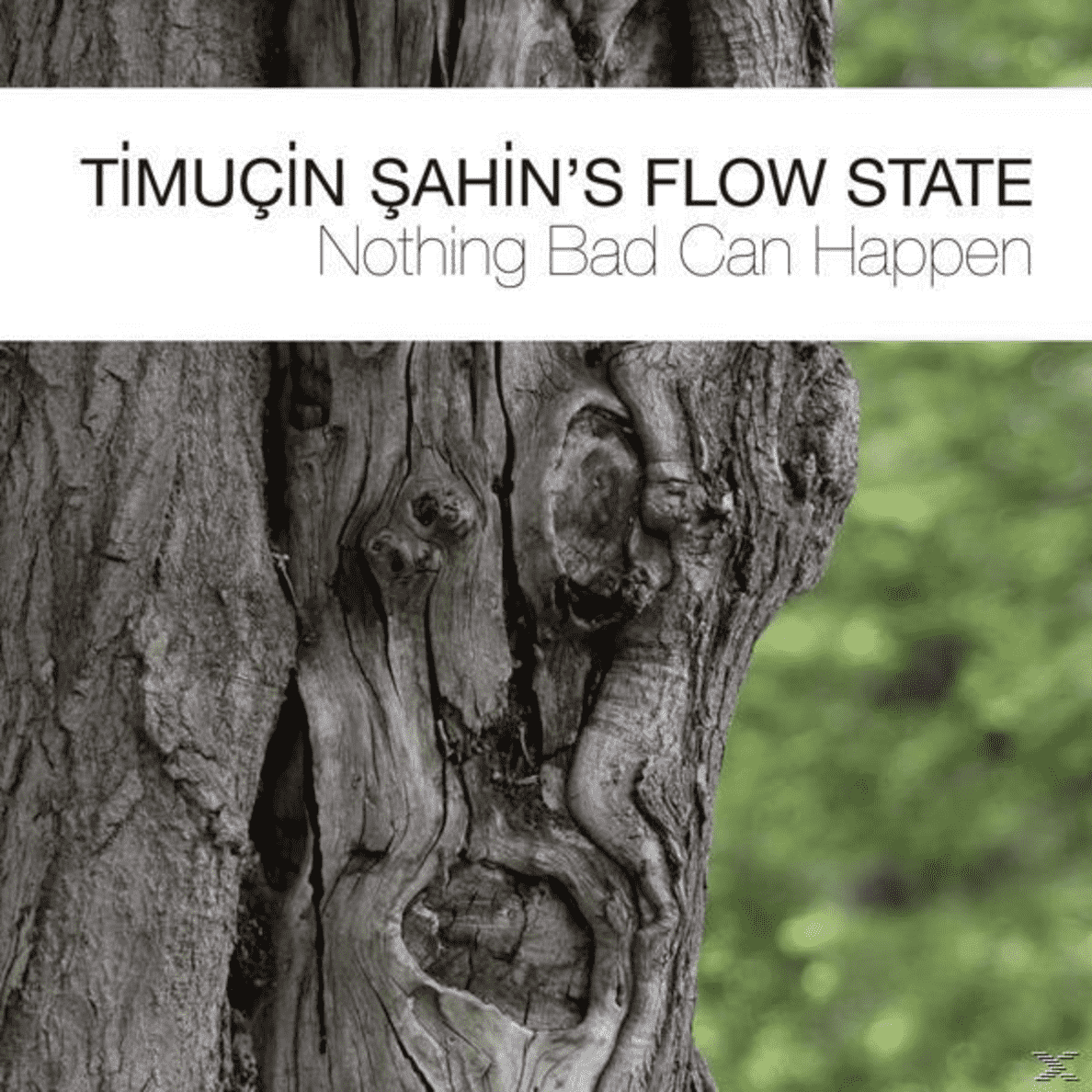 Nothing Bad Can Happen Timucin Sahin´s Flow State auf CD