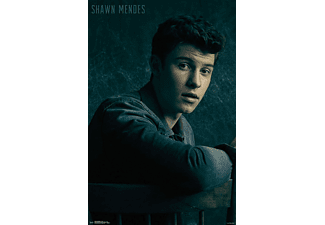 Shawn Mendes Poster Chair