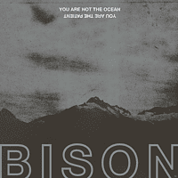 Bison - You Are Not The Ocean You Are The Patient [Vinyl]