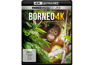 Borneo - (4K Ultra HD Blu-ray + Blu-ray)