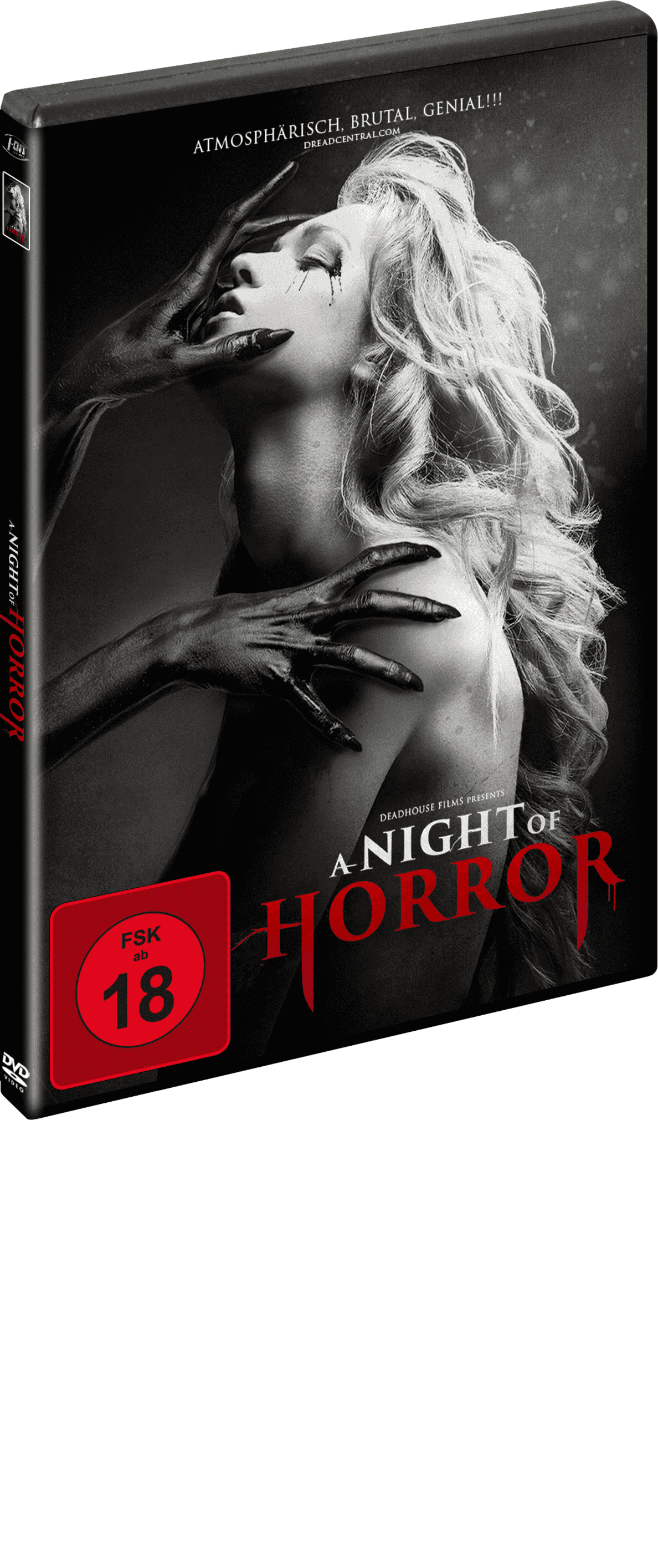 A Night of Horror - (DVD)