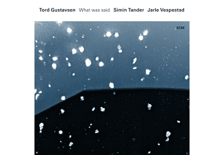 Jarle Vespestad, Gustavsen  Tord, Simin  Tander - What Was Said - (Vinyl)