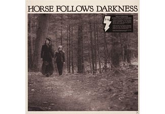 Delia Gonzalez - Horse Follows Darkness - (Vinyl)