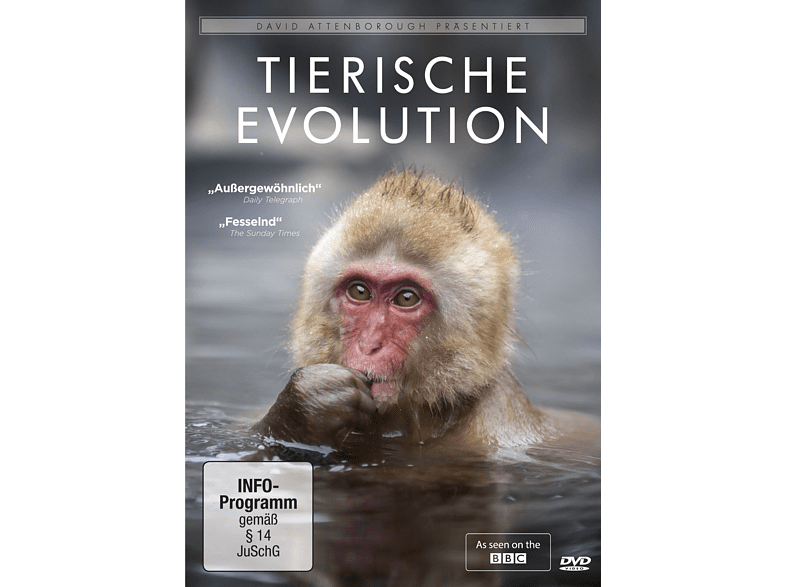 David Attenborough: Tierische Evolution [DVD]
