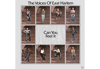 The Voices Of East Harlem - Can You Feel It - (Vinyl)