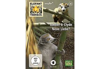 Elefant, Tiger & Co. 46 Amber & Clyde - Neue Liebe - (DVD)