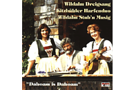 WILDALM DREIGSANG/KITZBÜHLER H - DAHOM IS DAHOAM [CD]