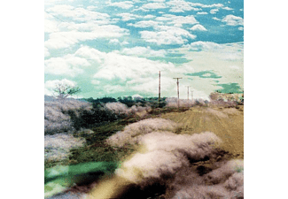 The World Is A Beautiful Place & I Am No Longer Afraid To Die - Always Foreign - (LP + Download)