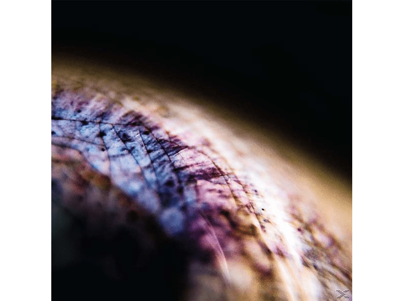 Emptyset - Skin (EP+MP3) [LP + Download]