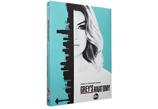 Grey's Anatomy Seizoen 13 DVD