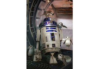 Star Wars Episode 8 Poster R2-D2 & Porgs