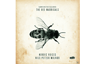 Nordic Voices - The Bee Madrigals [CD]