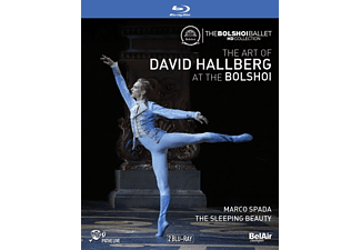 Hallberg David - The Art of David Hallberg at the Bolshoi - (Blu-ray)