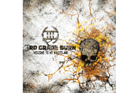 3rd Grade Burn - Welcome To My Wasteland [CD]