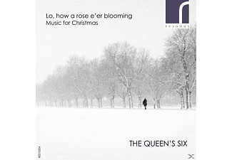 The Queen's Six - Lo,how a Rose e'er blooming [CD]