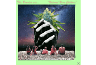 The Bennies - Natural Born Chillers [CD]
