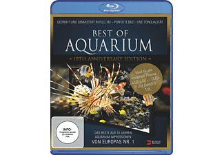 Best of Aquarium - (Blu-ray)