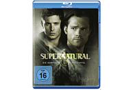 Supernatural: Die komplette 11. Staffel [Blu-ray]