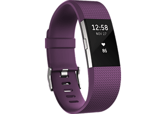 FITBIT Fitbit Charge 2 Small Mor Gümüş