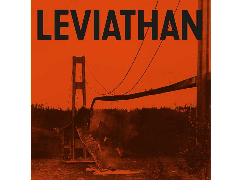 Report Suspicious Activity - Leviathan (+Download) [Vinyl]