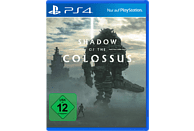 Shadow of the Colossus [PlayStation 4]