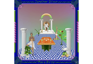 Jonathan Wilson - Rare Birds - (CD)