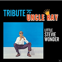 Stevie Wonder - TRIBUTE TO UNCLE RAY/.. [CD]