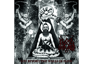 Black Mass Pervertor - Life Beyond The Walls Of Flesh (Vinyl) - (Vinyl)